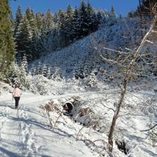 Winter-Wonderland Patscher Alm