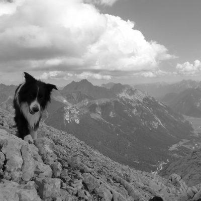 Hohe Munde (2.662 m)